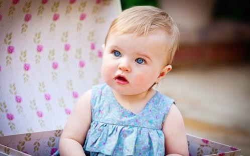 bebek 7